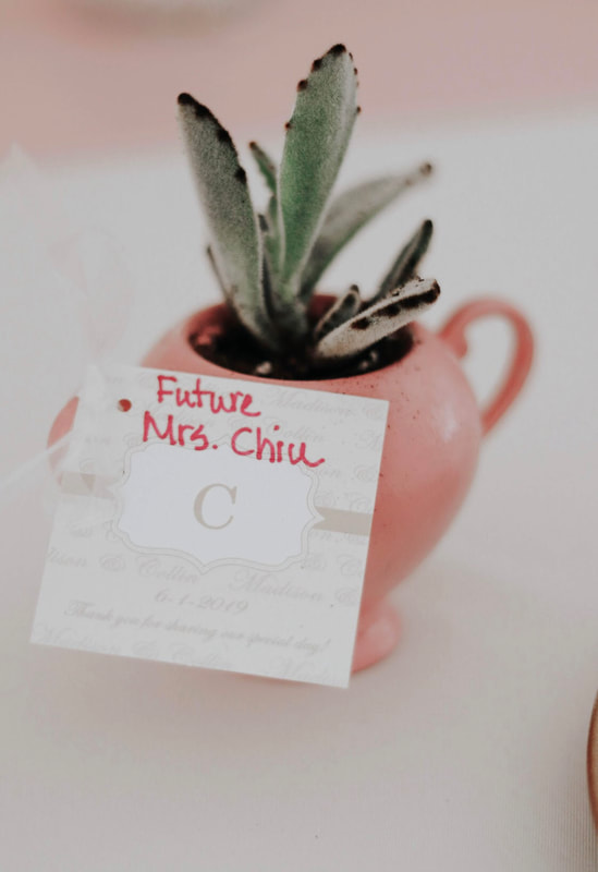 Potted succulent bridal party favor idea