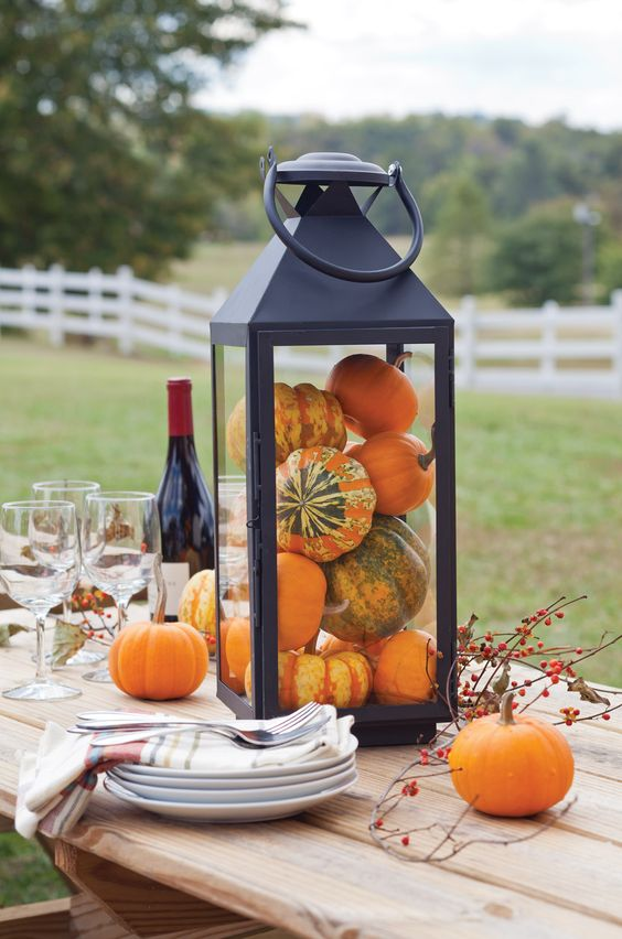 black modern lantern filled with mini pumpkins