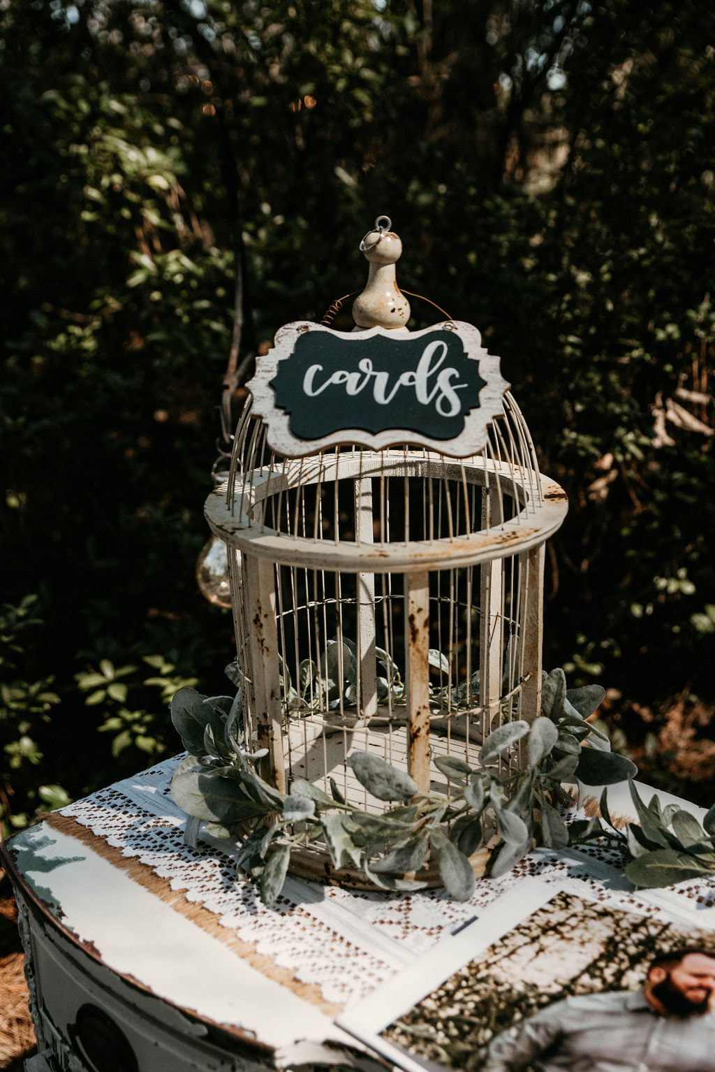 white bird cage with cards chalkboard sign surrounded by lambs ear greenery