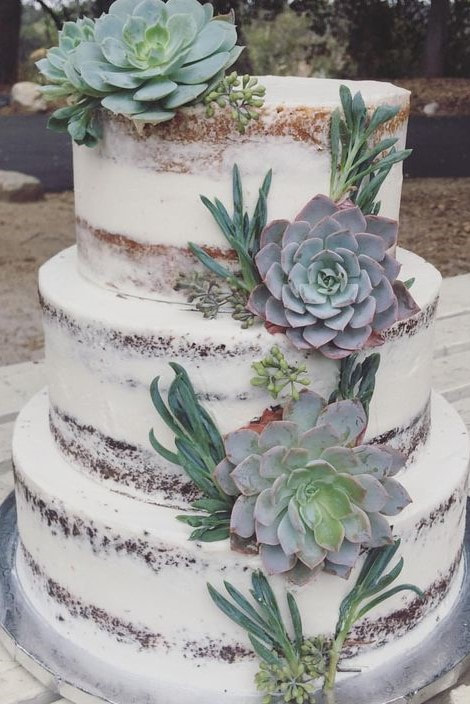 naked vegan wedding cake with succulents